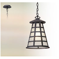 Troy Lighting FL5167 Benjamin LED 13 inch Vintage Iron Hanging Lantern Ceiling Light