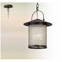 Troy Lighting FL5177 Altamont LED 12 inch French Iron Hanging Lantern Ceiling Light