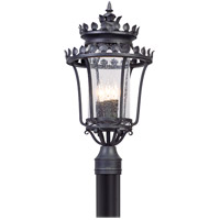 Troy Lighting Greystone - Post Mount - Forged Iron Finish - Clear Seeded Glass P5135