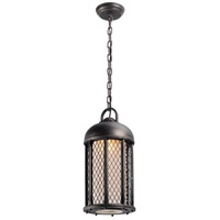 Troy Lighting Signal Hill 1 Light Outdoor Hanging Lantern in Aged Silver F4487