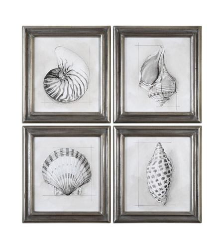Uttermost 35247 Shell Schematic 23 X 21 inch Art Prints