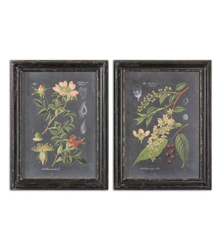 Uttermost 56053 Midnight Botanicals 33 X 25 inch Art Prints