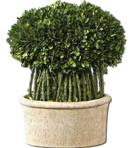 Uttermost Preserved Boxwood Willow Topiary Botanical in Natural Evergreen Foliage 60108 photo