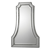 Cattaneo 40 X 26 inch Heavily Antiqued Silver/Champagne Mirror Home Decor