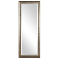Aaleah 77 X 29 inch Burnished Silver Wall Mirror
