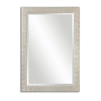 Porcius 41 X 29 inch Antiqued Silver Mirror Home Decor