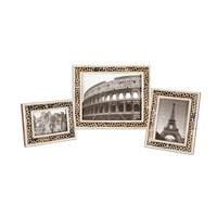 Uttermost Carnelia Photo Frames Set of 3 Home Accessory in Pieced Bone And Horn 18531
