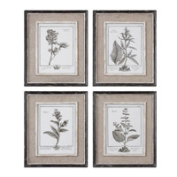 Uttermost Casual Grey Study I II III IV Set of 4 Art 32510