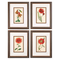 Uttermost 33495 Traditional Botanicals- n/a Wall Art thumb