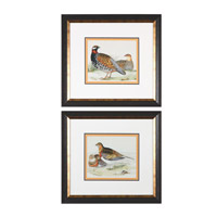 Uttermost 33612 Pair Of Quail 24 X 22 inch Bird Art Prints thumb