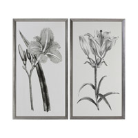 Sepia Flowers Sepia Tone Art, Set of 2