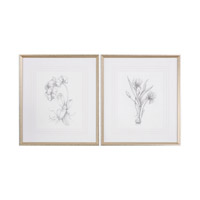 Uttermost Botanical Sketches Art in Silver 33649