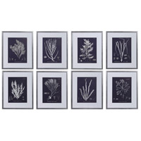 Coral On Navy 23 X 19 inch Framed Prints, Set of 8