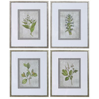 Stem Study 24 X 20 inch Framed Prints, Set of 4