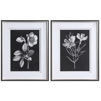 Black And White Flowers 40 X 32 inch Flowers Framed Prints, Set of 2