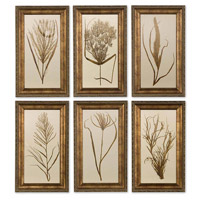 Uttermost Wheat Grass I II III IV V VI - Set of 6 Art 41151