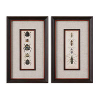 Uttermost Bug Collection I II Set of 2 Art 41266 photo thumbnail