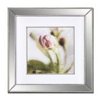 Uttermost Apple Blossom Wall Art 41341