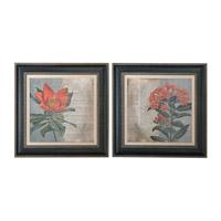 Uttermost Vintage Fleur Rouge Floral Art (Set of 2) 41385