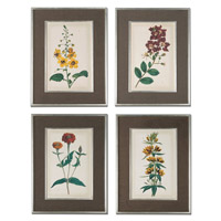 Uttermost Floral Varieties Framed Art (Set of 4) 41393