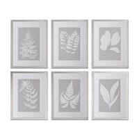 Uttermost Moonlight Ferns Framed Art (Set of 6) 41394