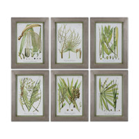 Uttermost Palm Seeds Set of 6 Framed Print 41515
