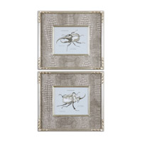 Uttermost Bug Study Set of 2 Framed Art 41528