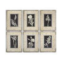 Uttermost Glowing Florals Set of 6 Framed Art 41535