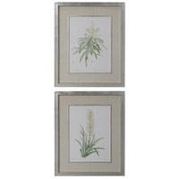 Plant Study 35 X 29 inch Framed Prints, Botanical Art, Set of 2