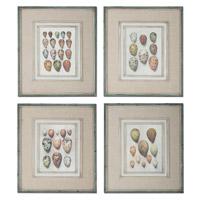 Uttermost Study of Eggs Framed Art (Set of 4) 51082