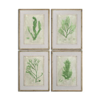 Uttermost Emerald Seaweed Set of 4 Framed Art 51092