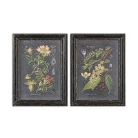 Uttermost Midnight Botanicals Wall Art in Distressed Black 56053