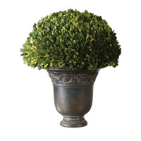Uttermost Preserved Boxwood Globe Botanical 60092