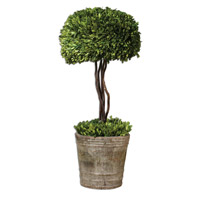 Uttermost Preserved Boxwood Tree Topiary Botanical 60095