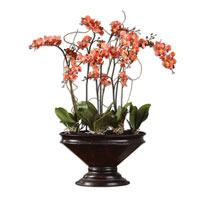 Uttermost 60104 Sunrise Orchids Deep Brown Botanical thumb