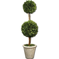 Uttermost Preserved Boxwood Two Sphere Topiary Botanical in Natural Evergreen Foliage 60106