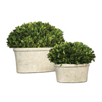 Uttermost Preserved Boxwood Oval Domes Botanicals Set of 2 in Natural Evergreen Foliage 60107