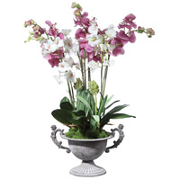 Nydia Potted Orchid