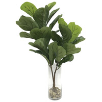 Urbana Fiddle Leaf Fig Plant