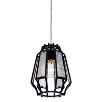 Varaluz Go-Go 1 Light Mini Pendant in Black 220M01BL