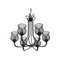 Varaluz Encaged 6 Light Chandelier in Black 222C06BL alternative photo thumbnail