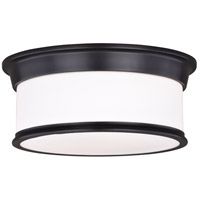 Vaxcel C0144 Carlisle 2 Light 14 inch Noble Bronze Flush Mount Ceiling Light