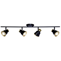 Vaxcel C0208 Fairhaven 4 Light Textured Black with Natural Brass Directional Light Ceiling Light