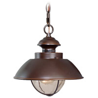 Vaxcel OD21506BBZ Harwich 1 Light 10 inch Burnished Bronze Outdoor Pendant