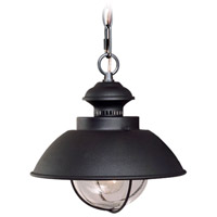 Vaxcel OD21506TB Harwich 1 Light 10 inch Textured Black Outdoor Pendant