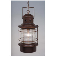 Vaxcel OD37006BBZ Hyannis 1 Light 10 inch Burnished Bronze Outdoor Pendant