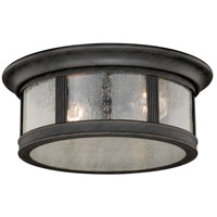 Vaxcel T0155 Hanover 2 Light 12 inch Brushed Iron Outdoor Ceiling
