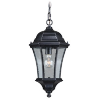 Vaxcel T0303 Aberdeen 1 Light 10 inch Shiny Black Outdoor Pendant