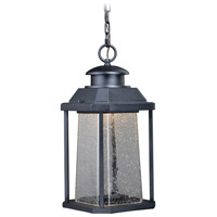 Vaxcel T0311 Freeport LED 9 inch Textured Black Outdoor Pendant
