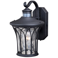 Vaxcel T0364 Abigail 1 Light 14 inch Textured Black Outdoor Wall Light